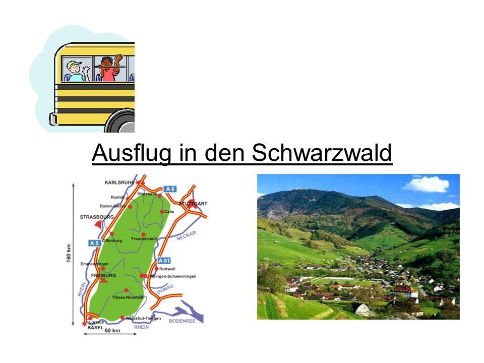 Ausflug in den Schwarzwald