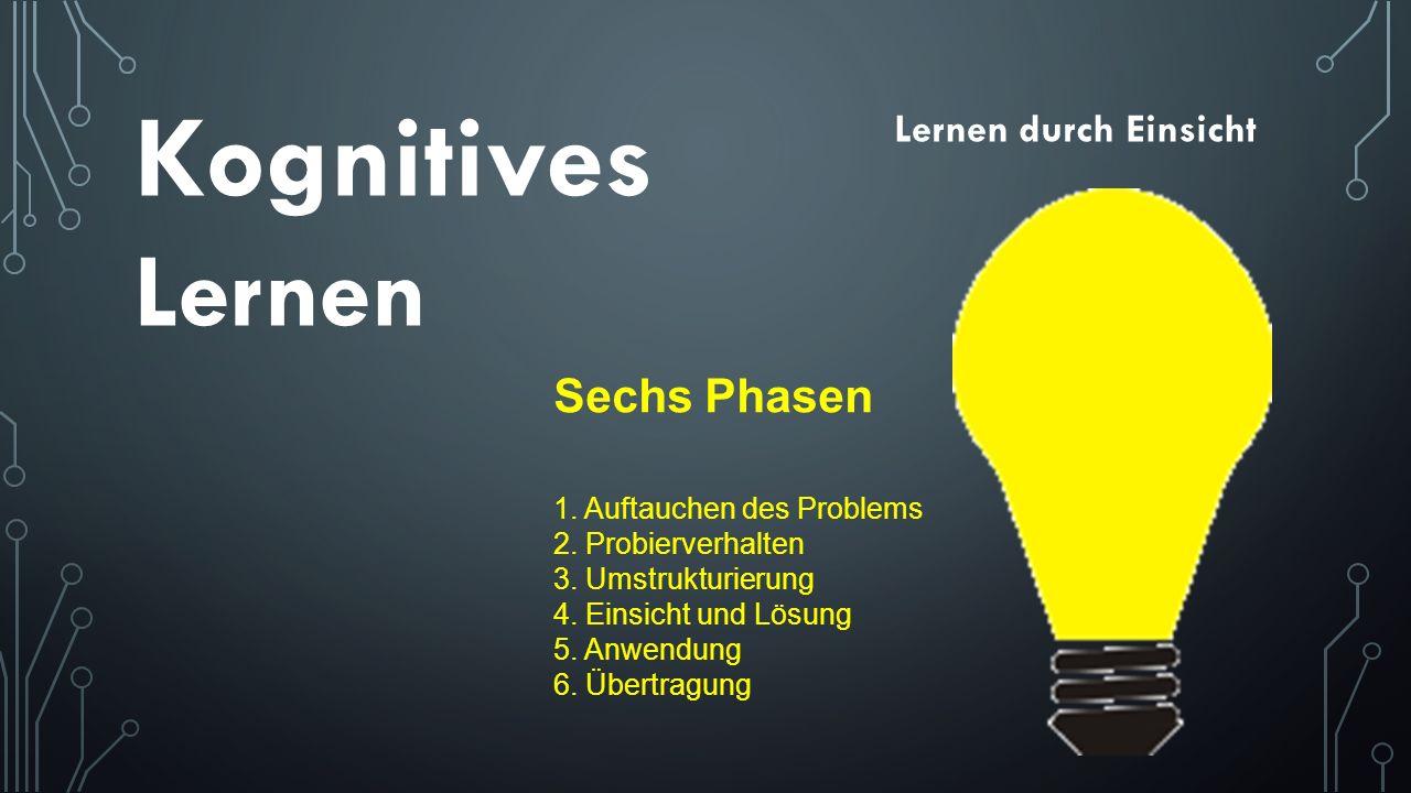 Lernen durch Einsicht Sechs Phasen 1. Auftauchen des Problems 2. Probierverhalten 3. Umstrukturierung 4. Einsicht und Lösung 5. Anwendung 6. Übertragu