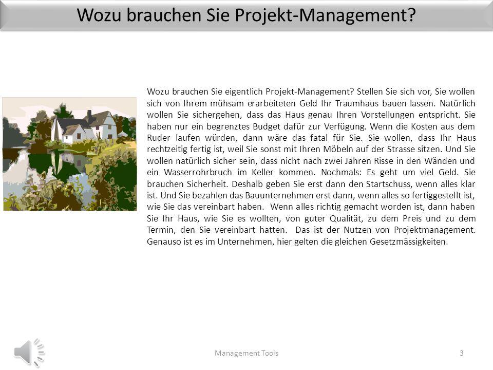 Qualitäts-Management im Projekt Management Tools63 Für ein optimales Qualitäts-Management im Projekt gibt es die folgenden Schritte 1.Die Qualitäts-Planung: Sie besteht aus der Definition der Qualitäts-Dimensionen, die das Produkt erfüllen soll.