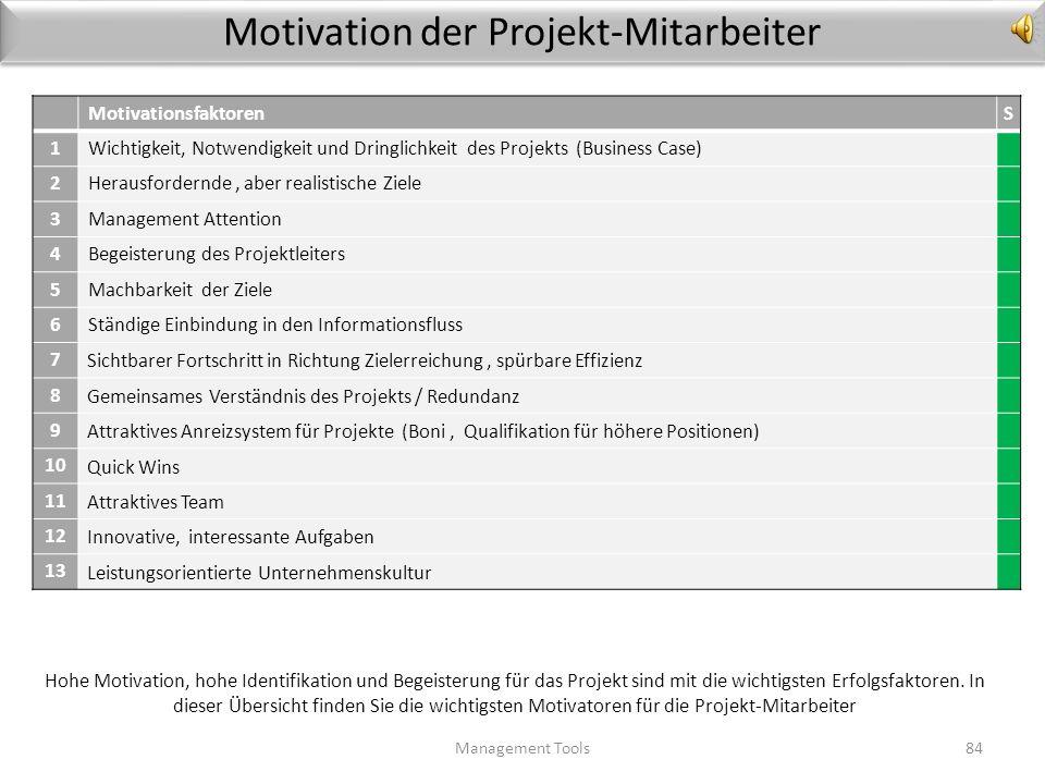 Leitlinien für den Projekterfolg Management Tools83 LeitlinienS 1 Ab einem Investitionsvolumen über x formellen Projektplan einhalten 2 Nutzen des Pro