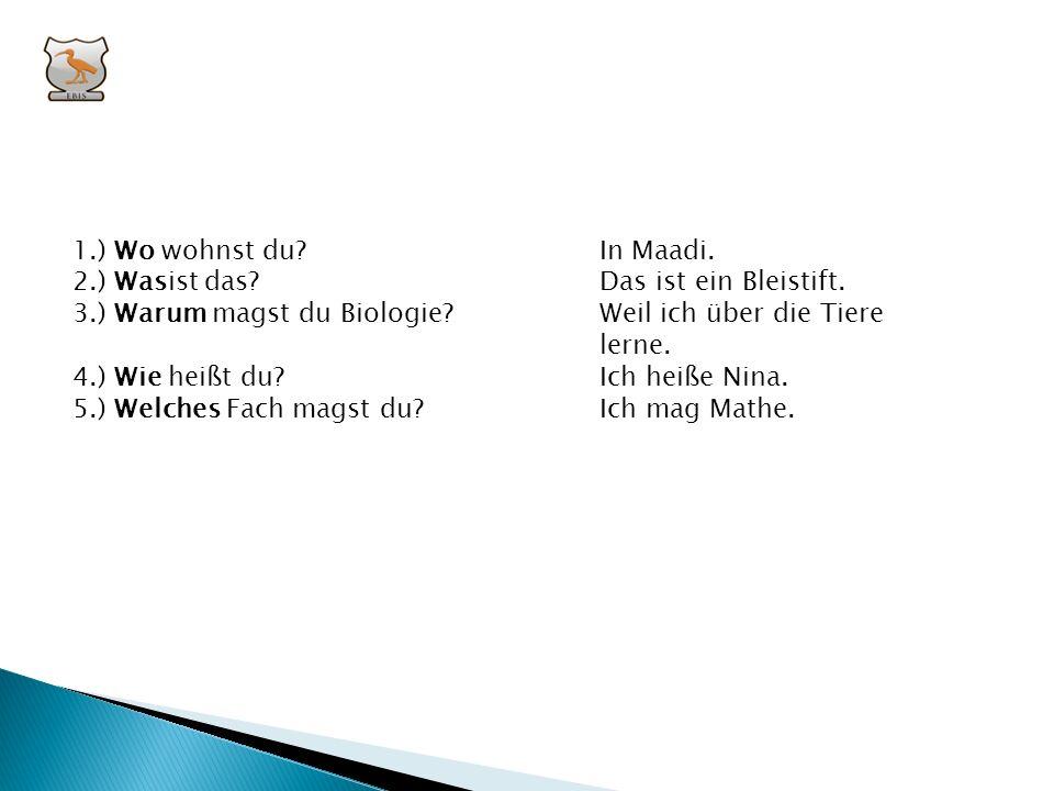IV. Stelle Fragen! (welches – wer – wo – was – warum – wie) 1.) ____________ wohnst du?In Maadi. 2.) ____________ ist das?Das ist ein Bleistift. 3.) _
