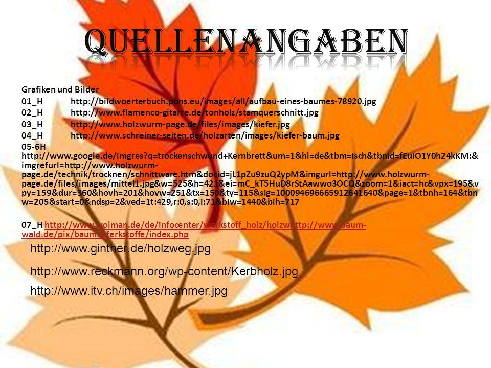 Grafiken und Bilder 01_Hhttp://bildwoerterbuch.pons.eu/images/all/aufbau-eines-baumes-78920.jpg 02_Hhttp://www.flamenco-gitarre.de/tonholz/stamquersch