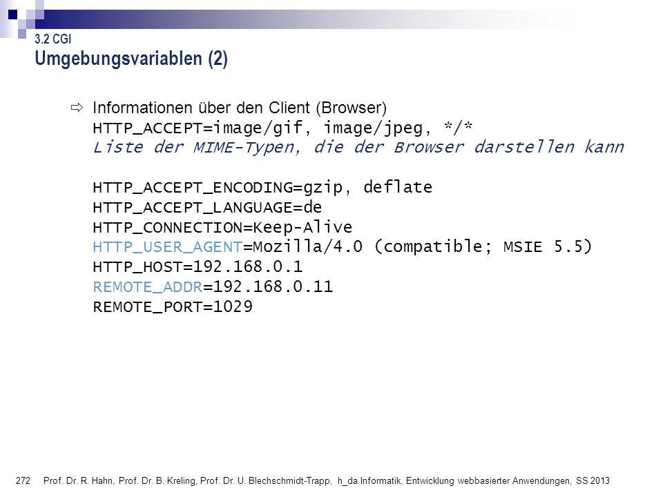 272 Prof. Dr. R. Hahn, Prof. Dr. B. Kreling, Prof. Dr. U. Blechschmidt-Trapp, h_da Informatik, Entwicklung webbasierter Anwendungen, SS 2013 Informati