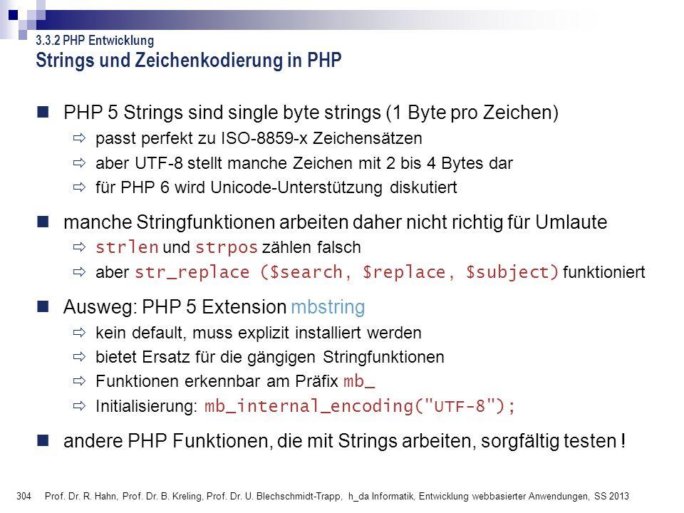 304 Prof. Dr. R. Hahn, Prof. Dr. B. Kreling, Prof. Dr. U. Blechschmidt-Trapp, h_da Informatik, Entwicklung webbasierter Anwendungen, SS 2013 Strings u