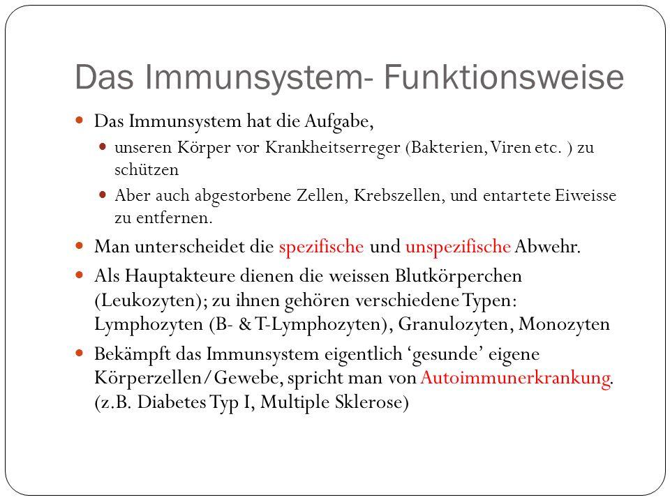 Das Immunsystem- Funktionsweise Das Immunsystem hat die Aufgabe, unseren Körper vor Krankheitserreger (Bakterien, Viren etc.