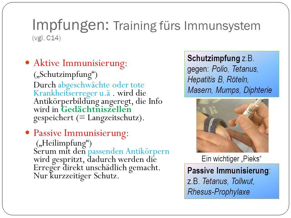 Impfungen: Training fürs Immunsystem (vgl.