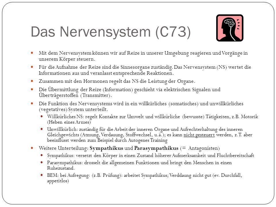 Das Nervensystem (C73) Mit dem Nervensystem können wir auf Reize in unserer Umgebung reagieren und Vorgänge in unserem Körper steuern.