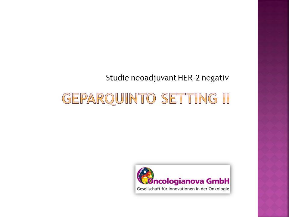 Studie neoadjuvant HER-2 negativ