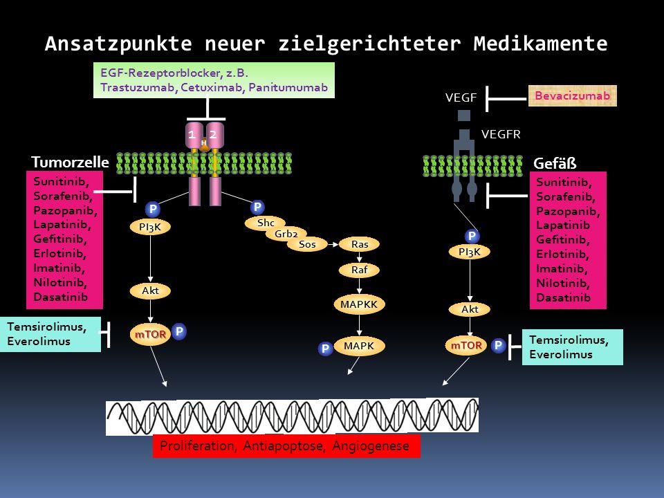Proliferation, Antiapoptose, Angiogenese P Shc Grb2 SosRas Raf MAPKK MAPK P P PI3K Akt mTOR P 21 EGF-Rezeptorblocker, z.B. Trastuzumab, Cetuximab, Pan
