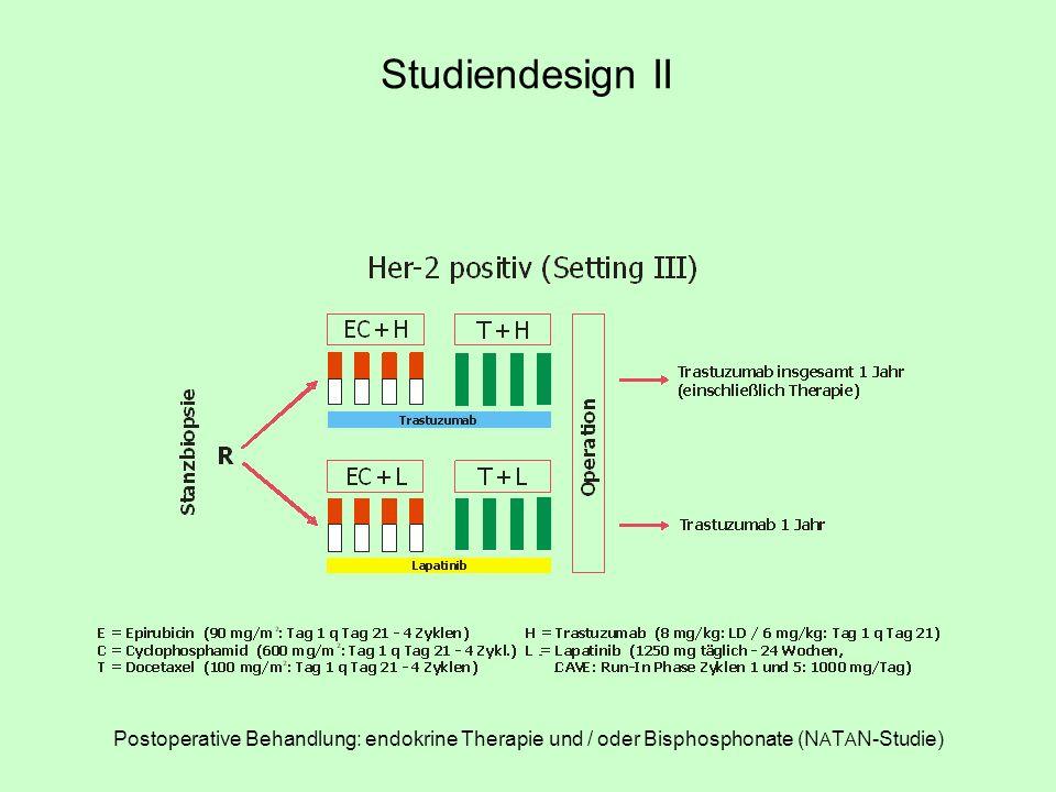 Studie 1st + 2nd line HER-2 negativ