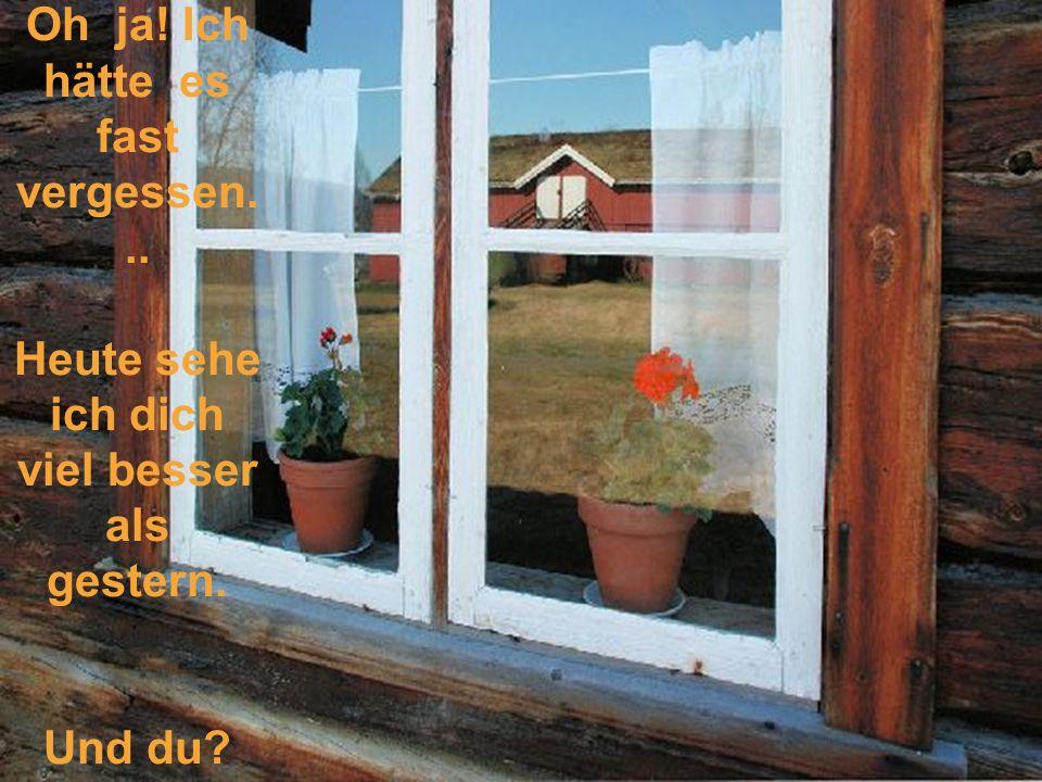 So ist auch das Leben. Alles was wir bei den Andern sehen, ist abhängig von der Sauberkeit der Fenster wodurch man schaut.... So können wir dann auch