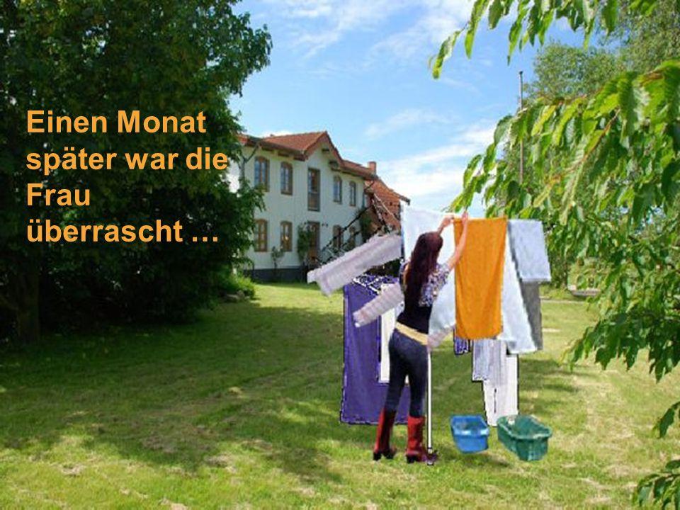 Und jedes Mal wenn die Nachbarin ihre Wäsche zum Trocknen hing, gab sie denselben Kommentar.....