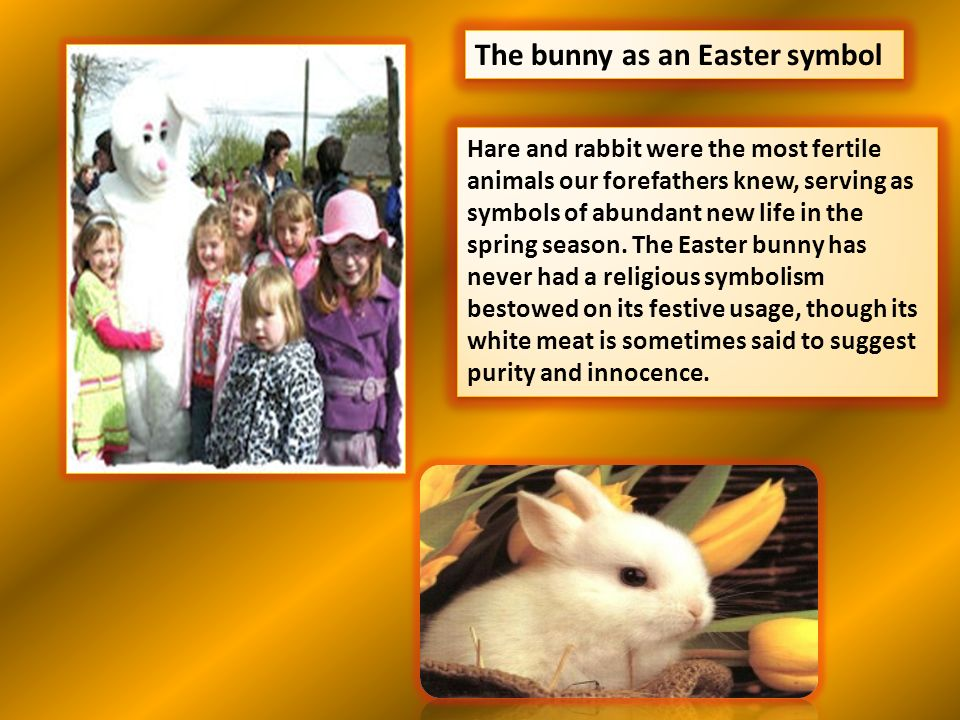 The bunny as an Easter symbol Hare and rabbit were the most fertile animals our forefathers knew, serving as symbols of abundant new life in the sprin