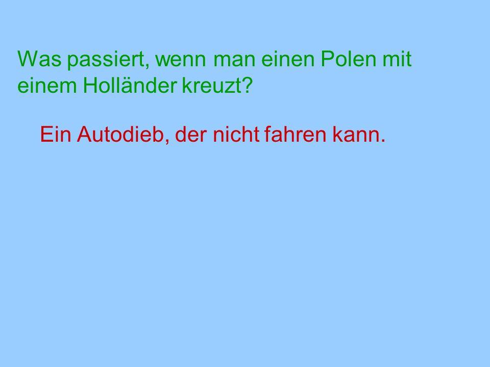 Was passiert, wenn man einen Polen mit einem Holländer kreuzt? Ein Autodieb, der nicht fahren kann.