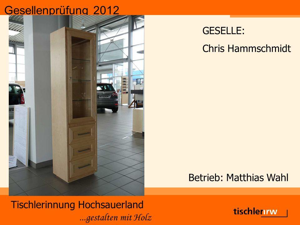 Gesellenprüfung 2012 Tischlerinnung Hochsauerland...gestalten mit Holz Betrieb: Matthias Wahl GESELLE: Chris Hammschmidt