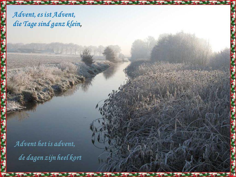 Advent, es ist Advent, die Tage sind ganz klein, Advent het is advent, de dagen zijn heel kort