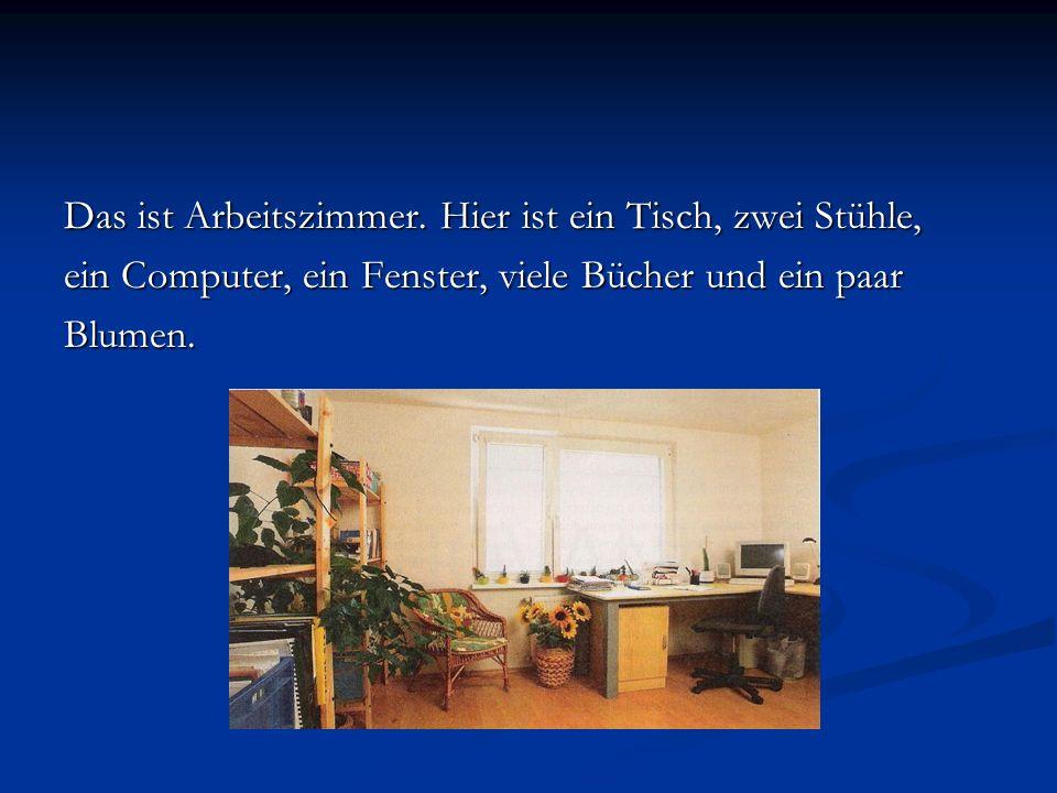 Das ist Arbeitszimmer. Hier ist ein Tisch, zwei Stühle, ein Computer, ein Fenster, viele Bücher und ein paar Blumen.