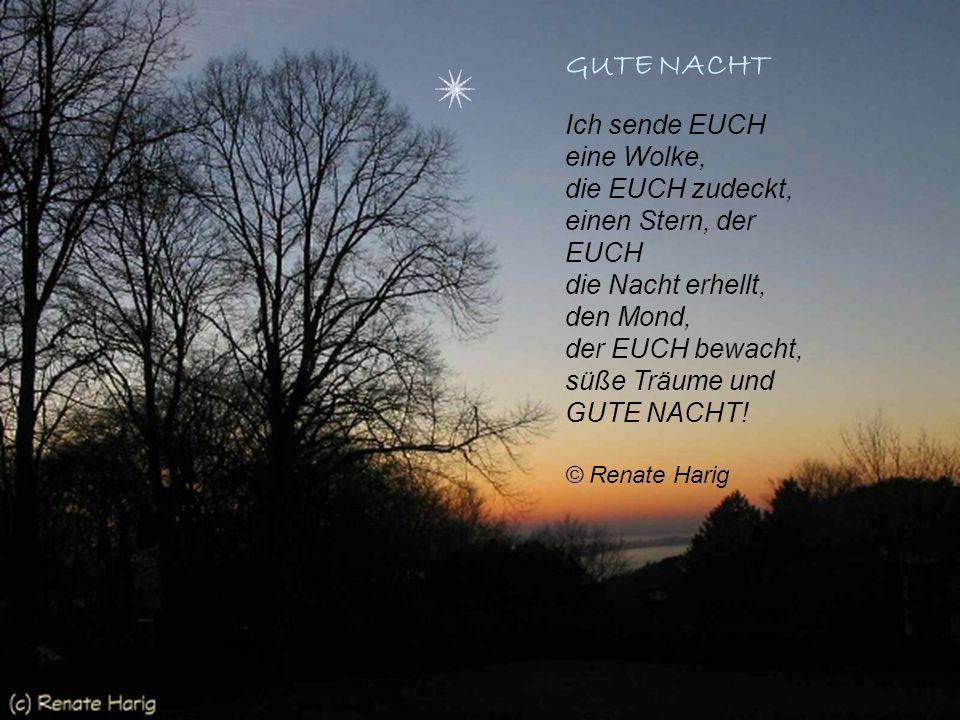 GUTE NACHT Ich sende EUCH eine Wolke, die EUCH zudeckt, einen Stern, der EUCH die Nacht erhellt, den Mond, der EUCH bewacht, süße Träume und GUTE NACHT.