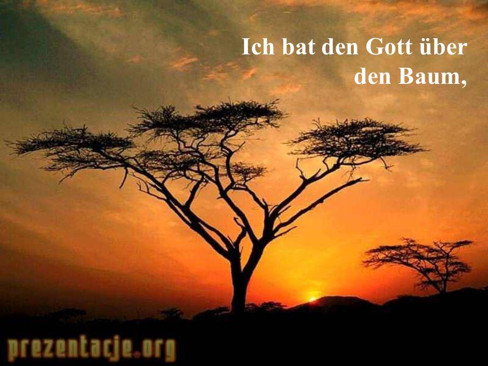 Ich bat den Gott über den Baum,