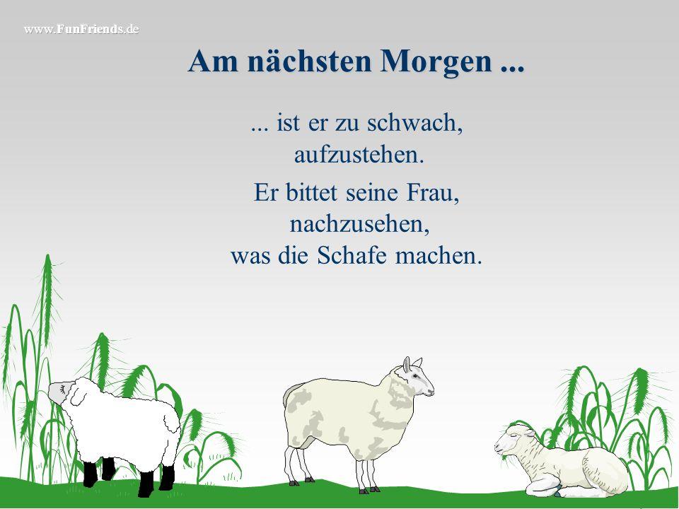 Am nächsten Morgen... Er packt seine Schafe wieder auf den Traktoranhänger, fährt in den Wald und besorgt es jedem Schaf drei mal! Völlig erschöpft ko