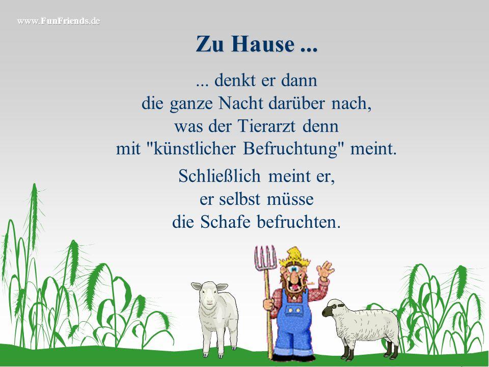 Aber leider...... werden die Schafe nicht schwanger und der Bauer bringt seinen Schafbock zum Tierarzt. Der stellt kurzerhand Impotenz beim Bock fest