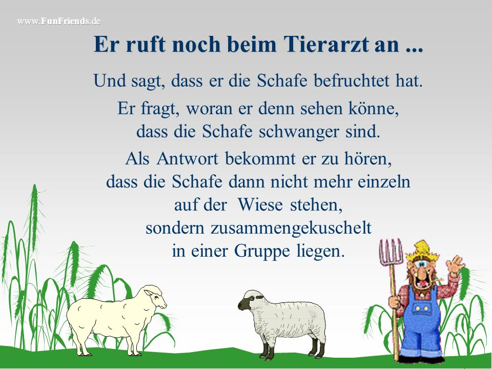 Am nächsten Morgen...... nimmt er all seine Schafe, lädt sie auf seinen Traktoranhänger und fährt mit ihnen in den Wald. Nun nimmt er sich jedes Schaf