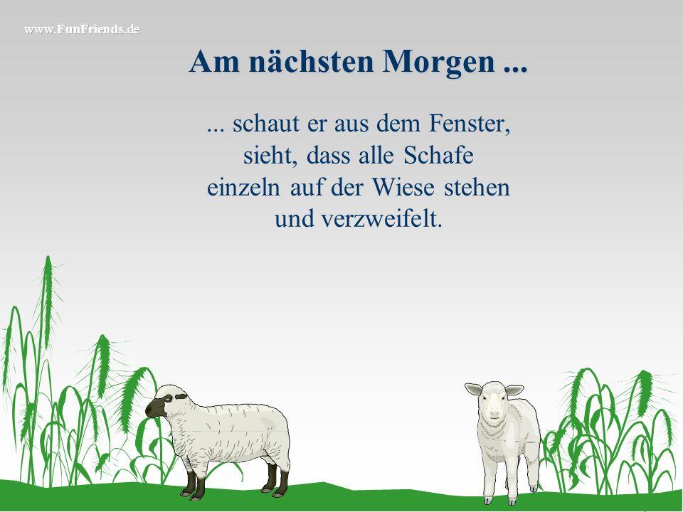 Er ruft noch beim Tierarzt an... Und sagt, dass er die Schafe befruchtet hat. Er fragt, woran er denn sehen könne, dass die Schafe schwanger sind. Als