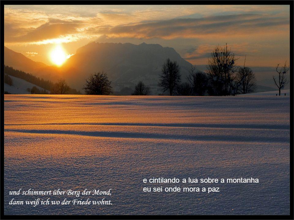 Und wenn es draußen leise schneit, sind Wald und Flur in weißen Kleid E quando do lado de fora cai neve bosque e campina se vestem de branco