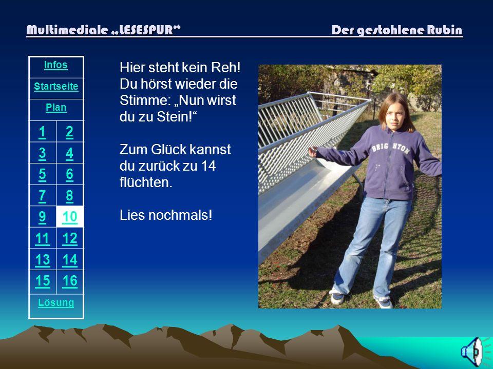 Multimediale LESESPUR Der gestohlene Rubin Infos Startseite Plan 12 34 56 78 910 1112 1314 1516 Lösung Auf dieser Bank sitzt nur ein Mann. Er kann dir