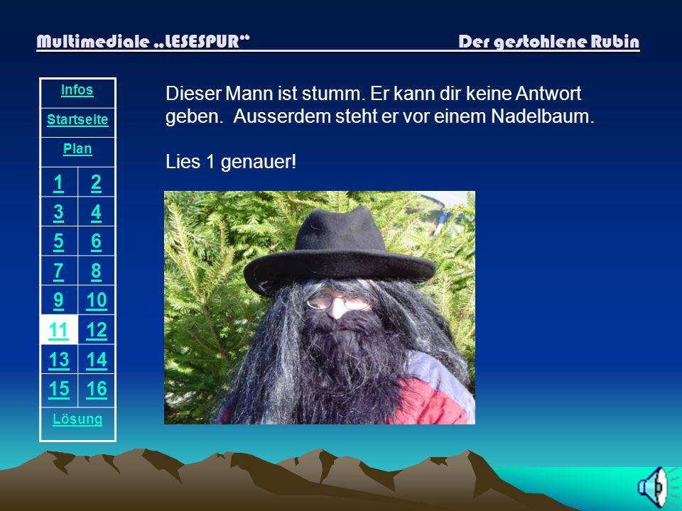 Multimediale LESESPUR Der gestohlene Rubin Infos Startseite Plan 12 34 56 78 910 1112 1314 1516 Lösung Hier steht kein Reh! Du hörst wieder die Stimme