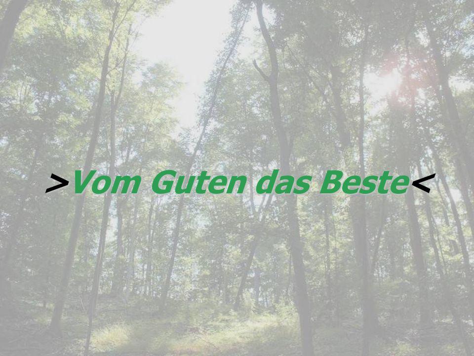 >Vom Guten das Beste Vom Guten das Beste<