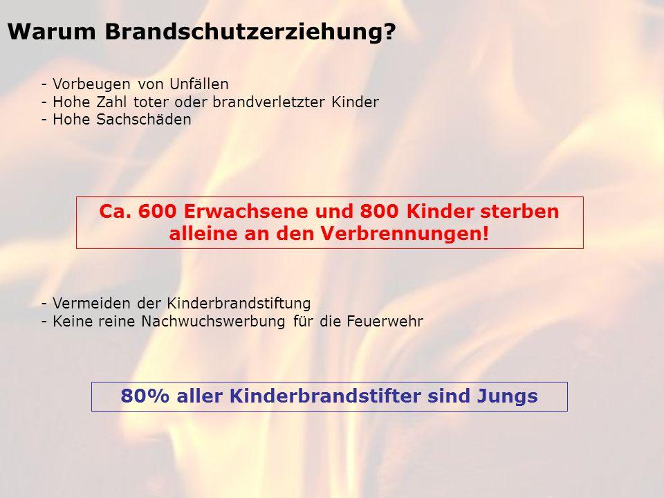 Warum Brandschutzerziehung? - Vorbeugen von Unfällen - Hohe Zahl toter oder brandverletzter Kinder - Hohe Sachschäden Ca. 600 Erwachsene und 800 Kinde