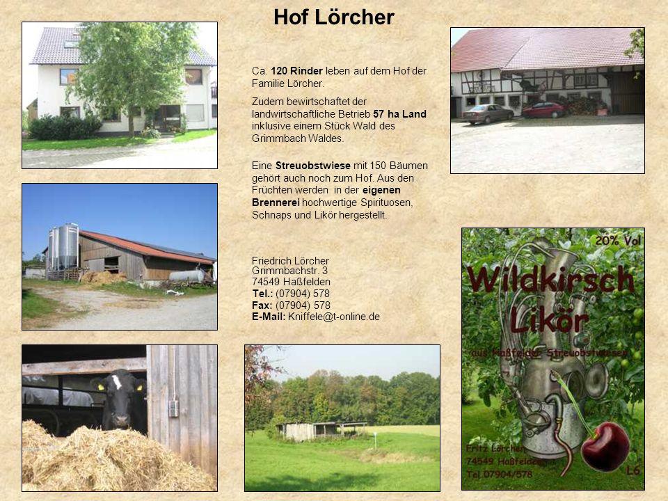 Hof Lörcher Ca. 120 Rinder leben auf dem Hof der Familie Lörcher. Zudem bewirtschaftet der landwirtschaftliche Betrieb 57 ha Land inklusive einem Stüc