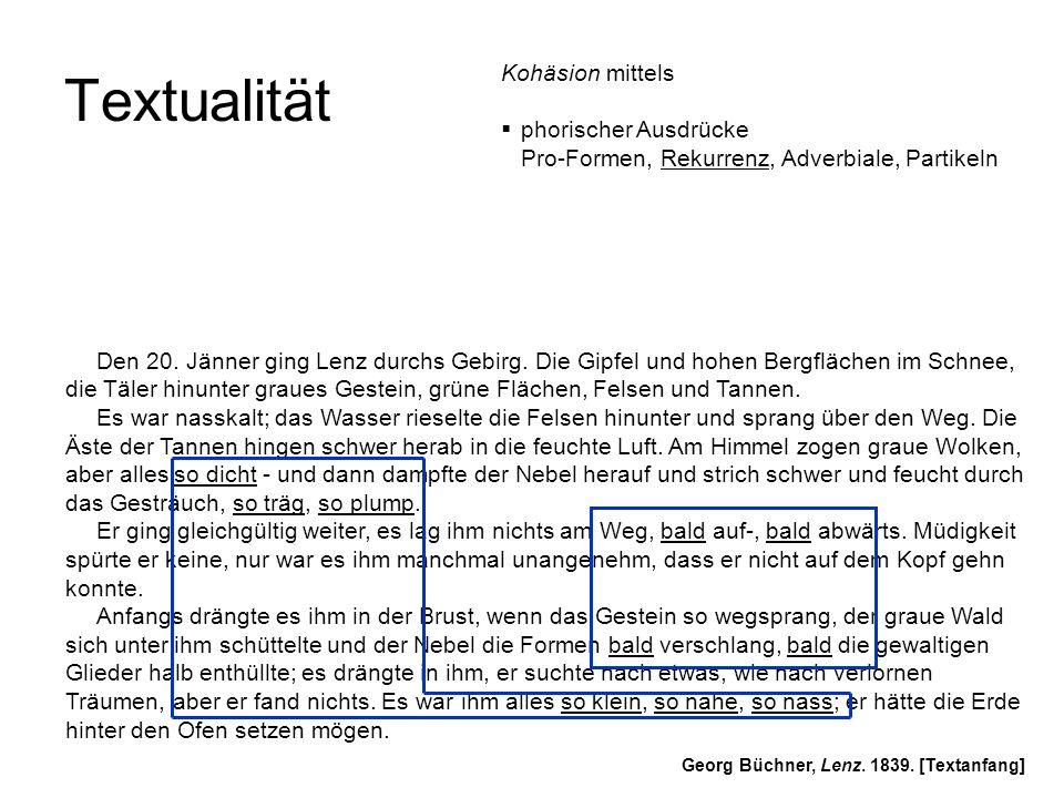 Textualität Den 20.Jänner ging Lenz durchs Gebirg.