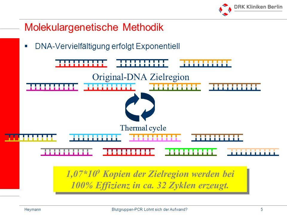HeymannBlutgruppen-PCR Lohnt sich der Aufwand?5 Molekulargenetische Methodik DNA-Vervielfältigung erfolgt Exponentiell 1,07*10 9 Kopien der Zielregion werden bei 100% Effizienz in ca.