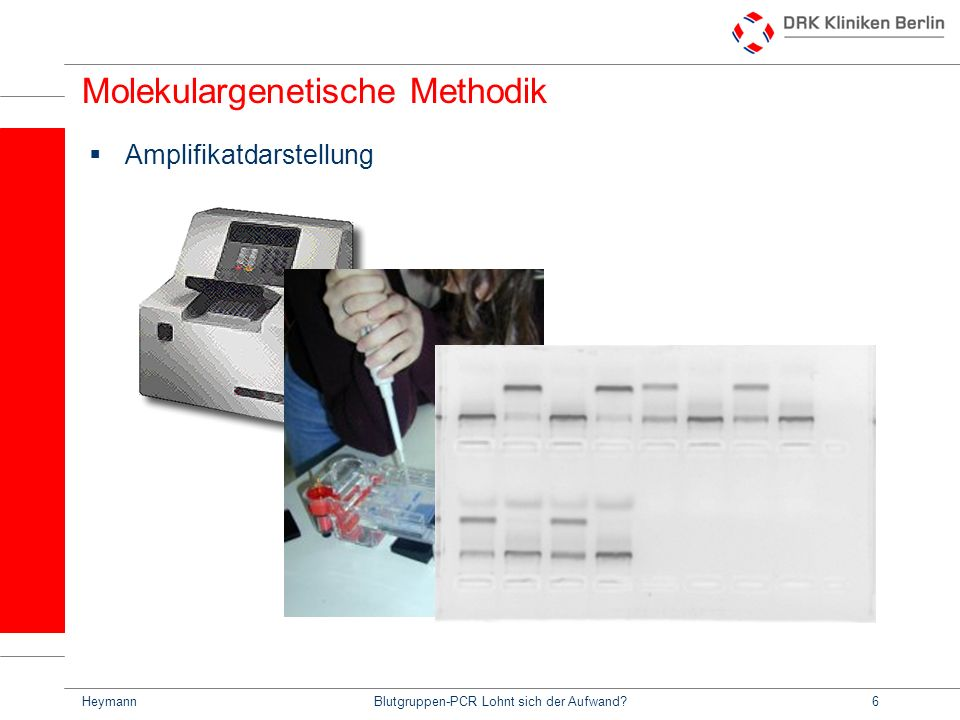 HeymannBlutgruppen-PCR Lohnt sich der Aufwand?7 Molekulargenetische Methodik Sequenzierung Amplifikat wird in die Kapillare injiziert Spannung wird angelegt Amplifikattrennung durch Länge: Große Stränge wandern langsamer durch das Gel Amplifikate wandern zur Anode Farbfluoreszenz der endständigen Base wird detektiert Detektor Fenster