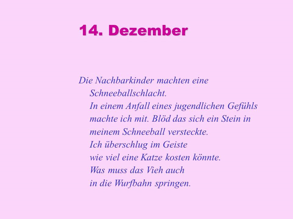 14. Dezember Die Nachbarkinder machten eine Schneeballschlacht. In einem Anfall eines jugendlichen Gefühls machte ich mit. Blöd das sich ein Stein in