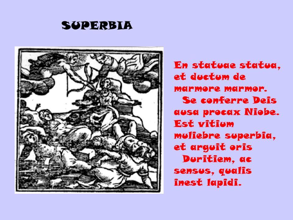 En statuae statua, et ductum de marmore marmor. Se conferre Deis ausa procax Niobe. Est vitium muliebre superbia, et arguit oris Duritiem, ac sensus,