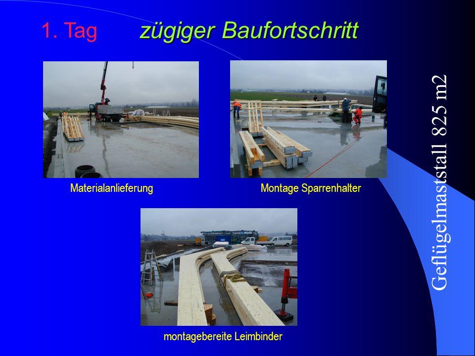 zügiger Baufortschritt 1. Tag MaterialanlieferungMontage Sparrenhalter montagebereite Leimbinder Geflügelmaststall 825 m2