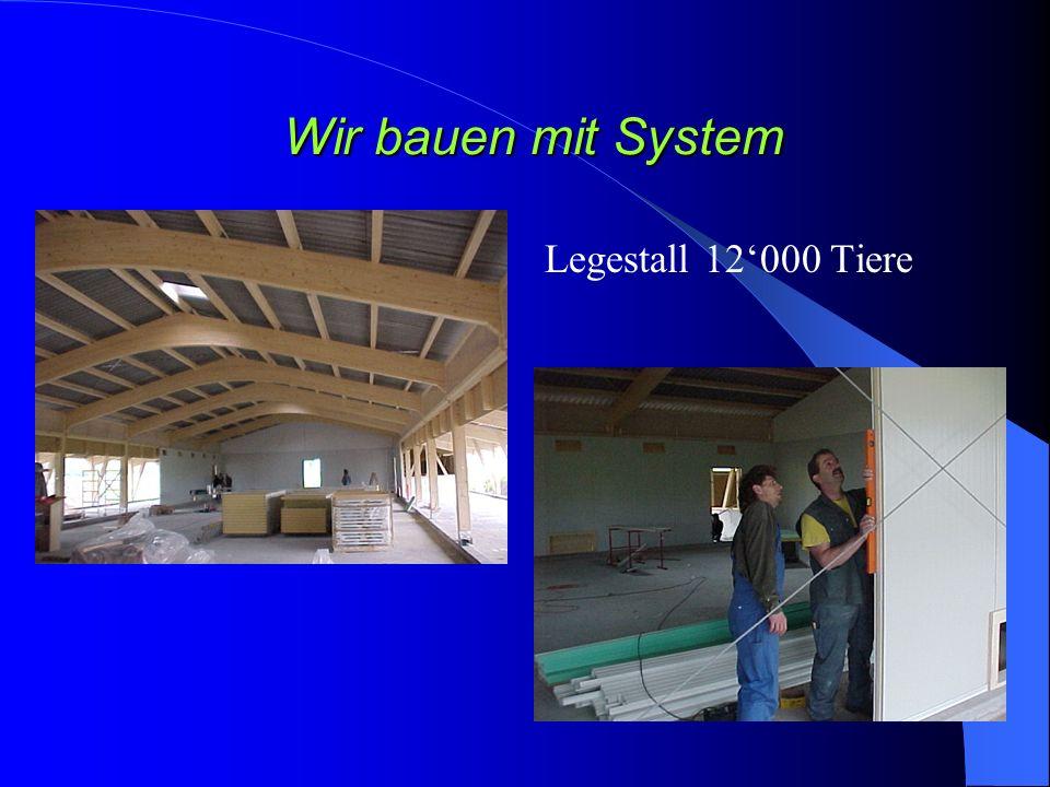 Wir bauen mit System Legestall 12000 Tiere
