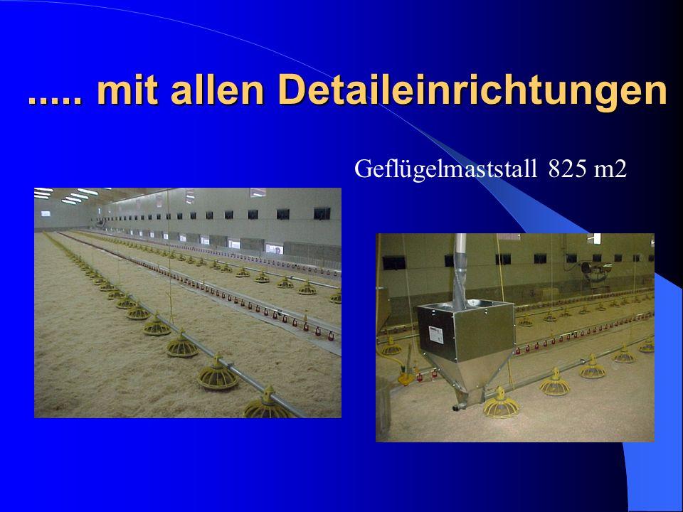 ..... mit allen Detaileinrichtungen Geflügelmaststall 825 m2