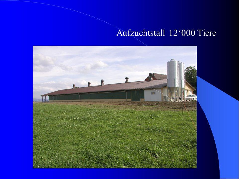 Wir bauen mit System Geflügelmaststall 825 m2...... innerhalb 10 Tagen