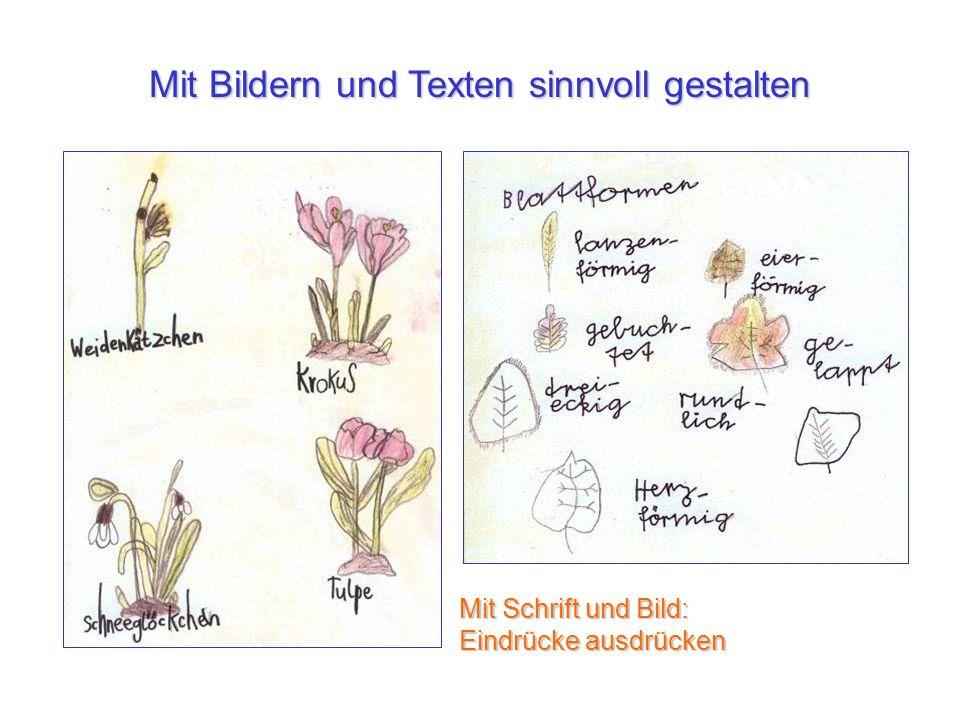 Mit Bildern und Texten sinnvoll gestalten Mit Schrift und Bild: Eindrücke ausdrücken