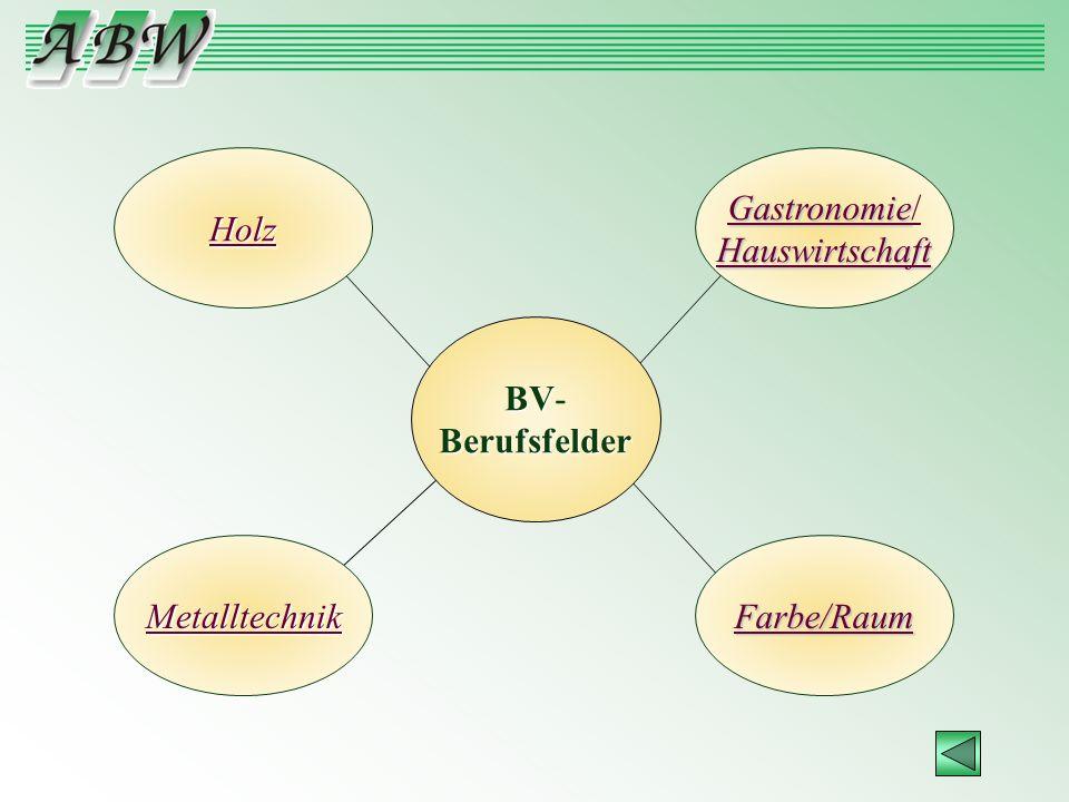 BV BV-Berufsfelder Metalltechnik Holz Farbe/Raum Gastronomie / Hauswirtschaft