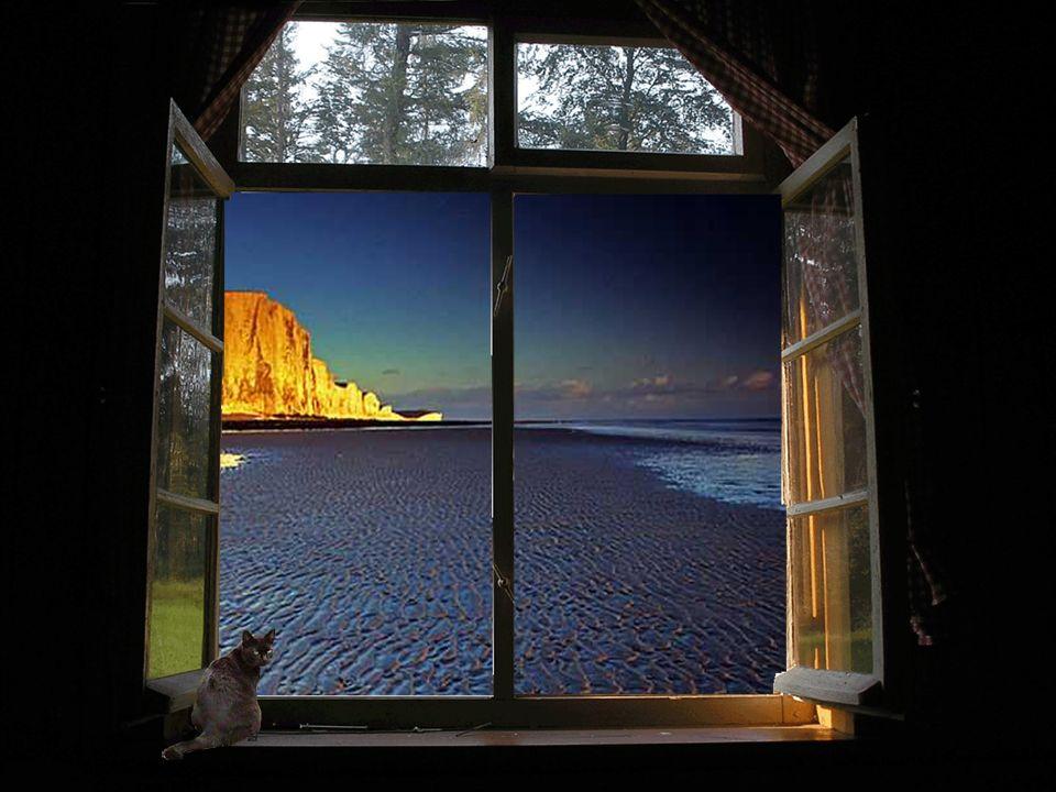Der Ast vor meinem Fenster schüttelt sich, als ob er friert, als ob der kalte Abendwind ihm nicht behagt, der mir die letzten Glockentöne von den Türmen bringt und ein paar Wolkenfetzen heim ins Dunkel jagt.