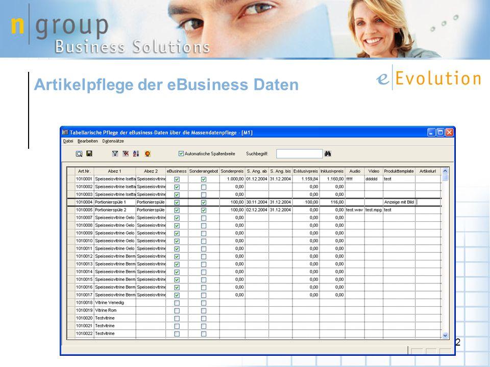 42 Artikelpflege der eBusiness Daten