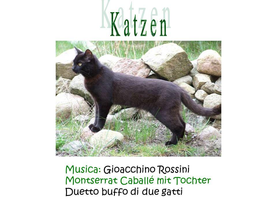 Musica: Gioacchino Rossini Montserrat Caballé mit Tochter Duetto buffo di due gatti