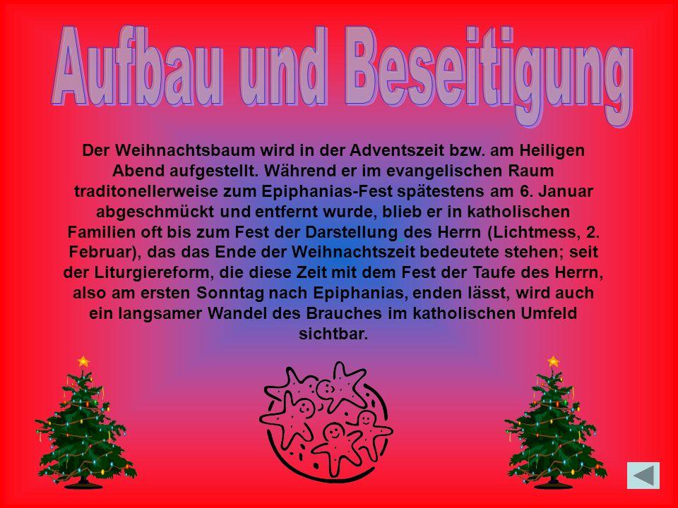 Der Weihnachtsbaum wird in der Adventszeit bzw.am Heiligen Abend aufgestellt.