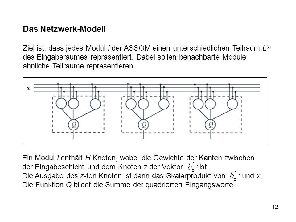 12 Das Netzwerk-Modell Ziel ist, dass jedes Modul i der ASSOM einen unterschiedlichen Teilraum L (i) des Eingaberaumes repräsentiert.