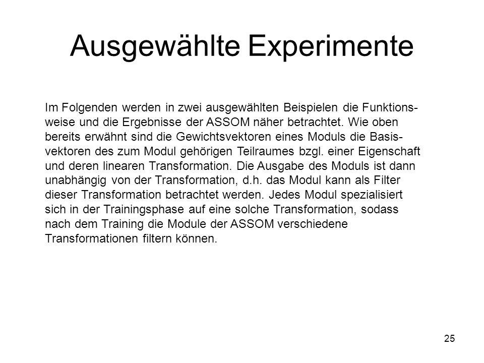 25 Ausgewählte Experimente Im Folgenden werden in zwei ausgewählten Beispielen die Funktions- weise und die Ergebnisse der ASSOM näher betrachtet.